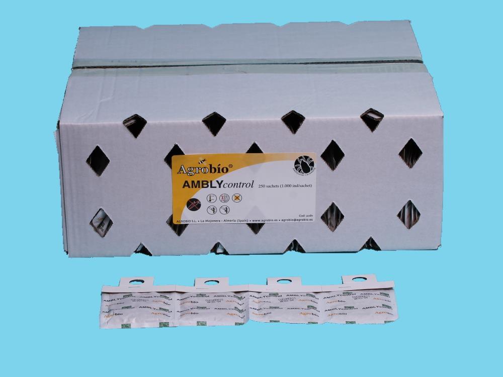 AMBLYcontrol (Amblyseius cucumeris) saszetki 250x1000os.