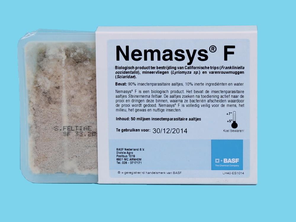 Nemasys F (na szkodniki szklarniowe) 50 mln