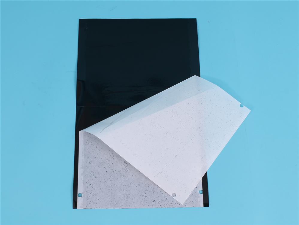 Tablica sygnalizacyjna czarna (Tuta absoluta) 40x25cm