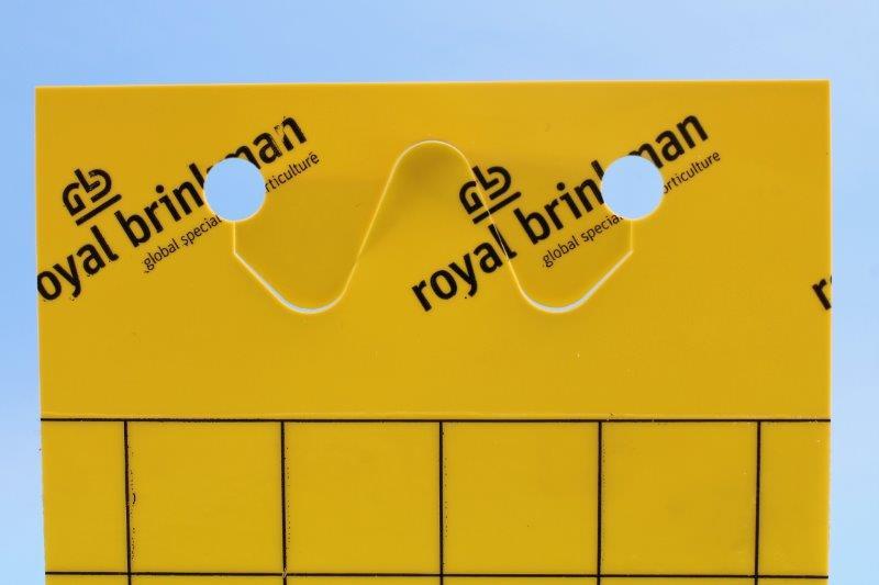 Tablica klej sygnaliz. żółta [10x25cm] 10szt perf+druciki