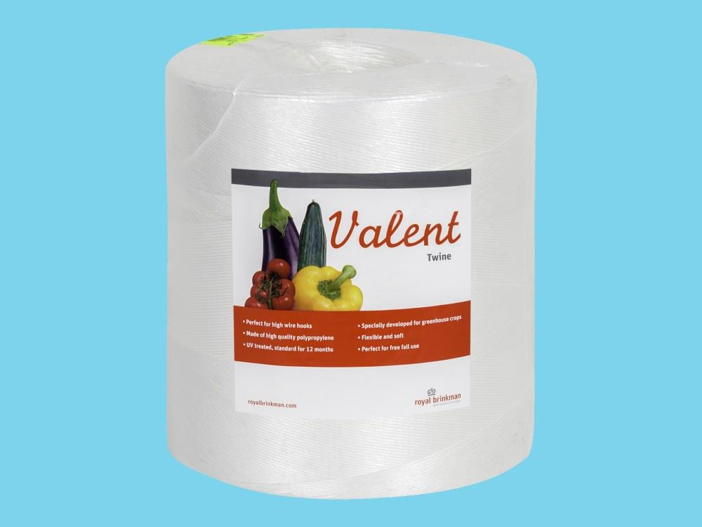 Sznurek valent 1/1000 6kg biały