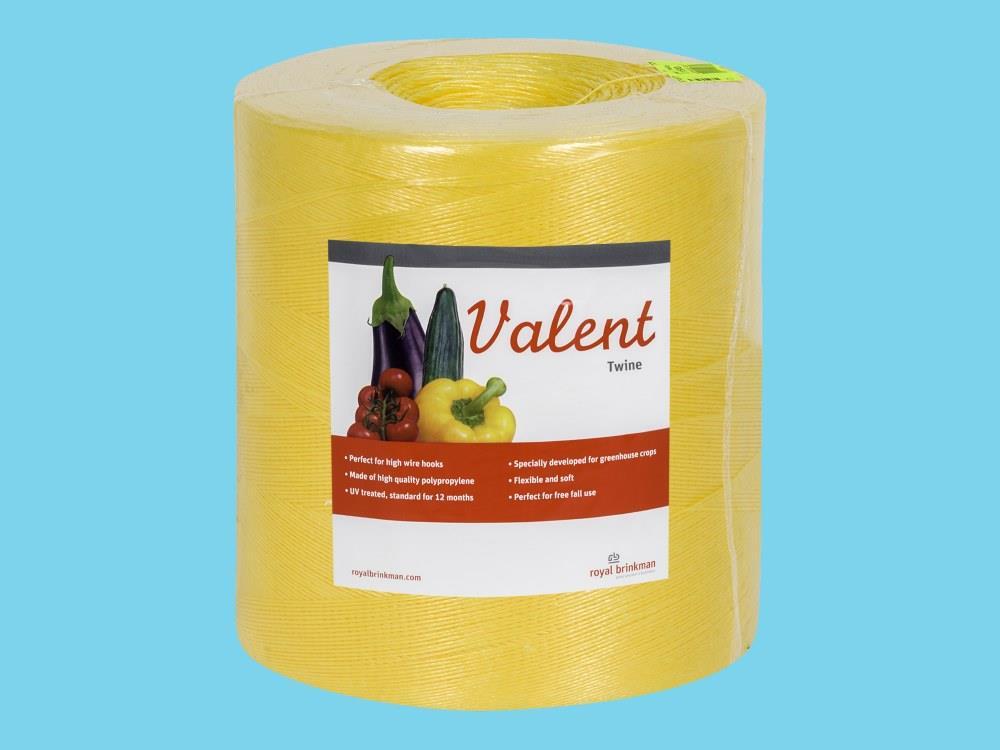 Sznurek valent 1/1000 6kg żółty