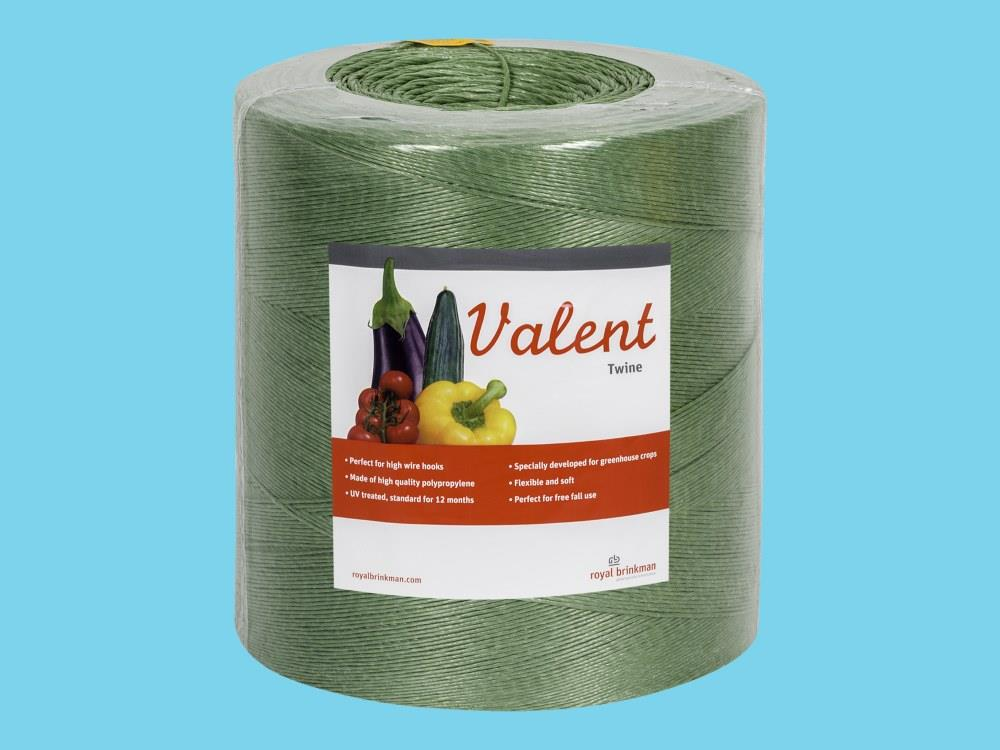 Sznurek valent 1/1000 6kg zielony
