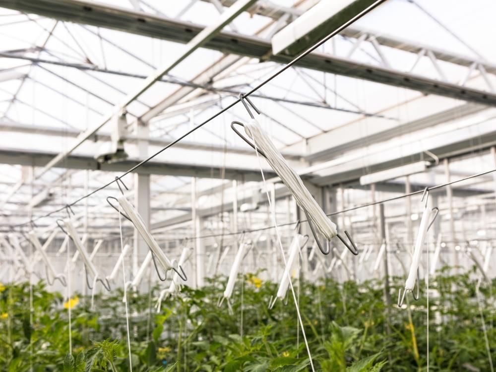 Sznurek valent 1/1500 6kg zielony