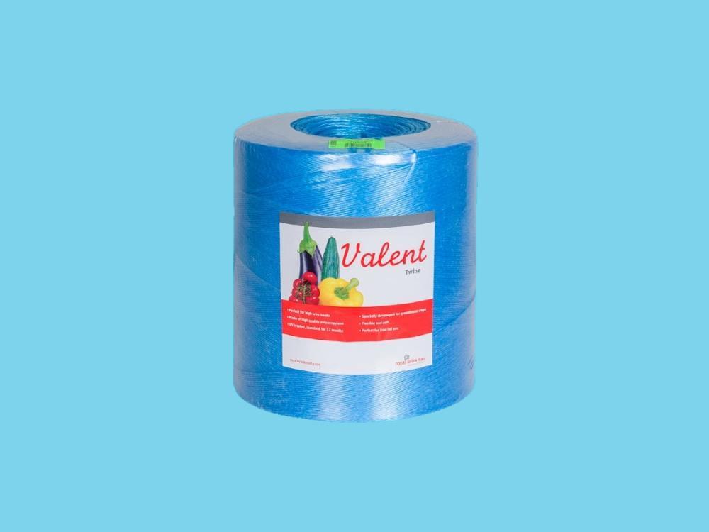 Sznurek valent 1/1500 6kg niebieski