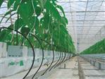 Czyszczenie systemu nawadniającego przy zmianie uprawy