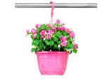 Wieszak TEKU MHB 38 różowy SPU (598)