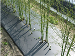 Folia biodegradowalna MP 12mic 1,4m x 1000m 3m-ce